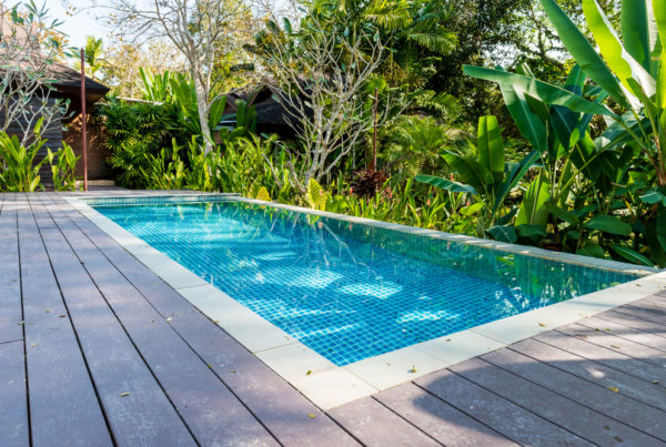 New swimming pool surrounded by tropical garden