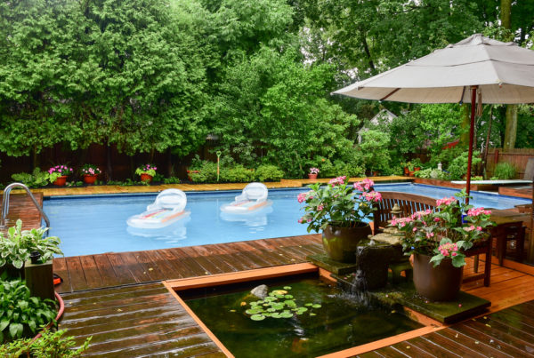 Backyard pool with landscaped garden surrounds.